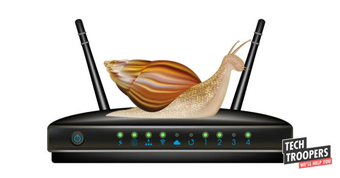Snall on router